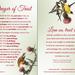 Roy Lessin Prayer Card—Prayer of Trust